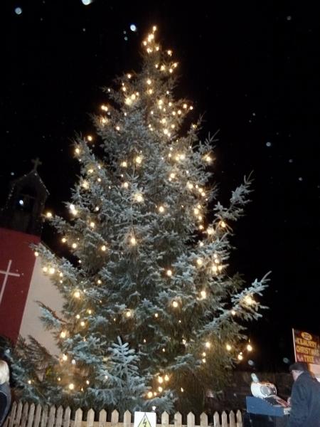 xmas_tree_2012_77