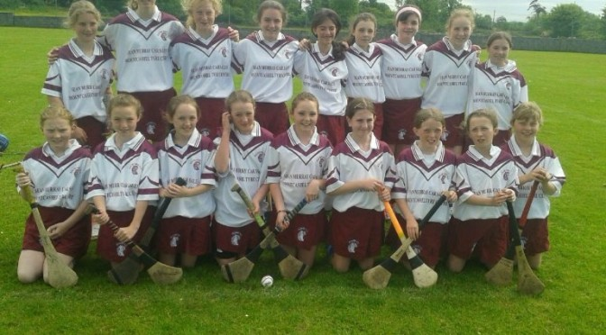 Best of Luck to Kilmurry National School in Camogie Final…