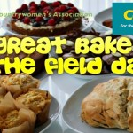 Great Bake Off Kilmurry Style at the Field Day on Sunday 9th August 2015